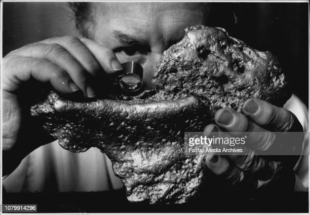 John Duck director of Gold Quest NL with the gold nugget for saleAustralia's largest privately owned gold nugget is up for sale Cindy's Pride...