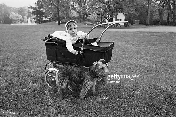 John F. Kennedy Jr. Mischievously leans out of his baby carriage and reaches for the family's pet, Charlie. The picture was taken while Mrs. Kennedy...