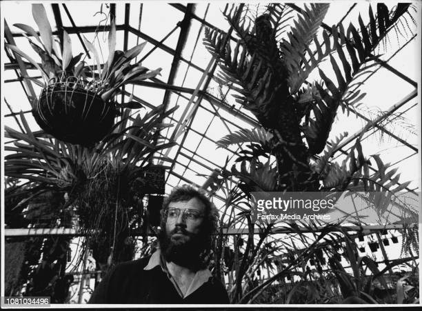 John Forlonge of the Royal Botahic Gardens with some exotic plants he has collected Langing from rood 1 John Forlonge with a Thayeria Cornucopia fern...