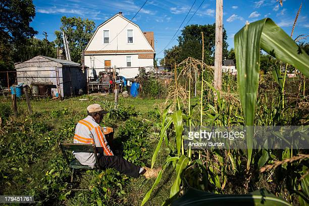 John Fullmore picks beans in his garden which he created in an empty lot next to his house on September 3 2013 in Detroit Michigan Fullmore who is...