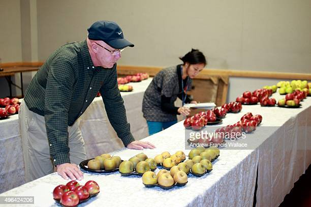 John Gardner judges apples while clerk Ana Stuart keeps the categories in order at The Royal Agricultural Winter Fair at Exhibition Place
