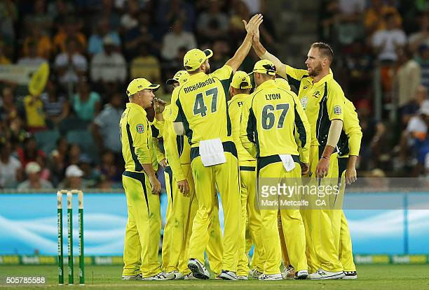 John Hastings of Australia celebrates with team mates after taking the wicket of MS Dhoni of India during the Victoria Bitter One Day International...