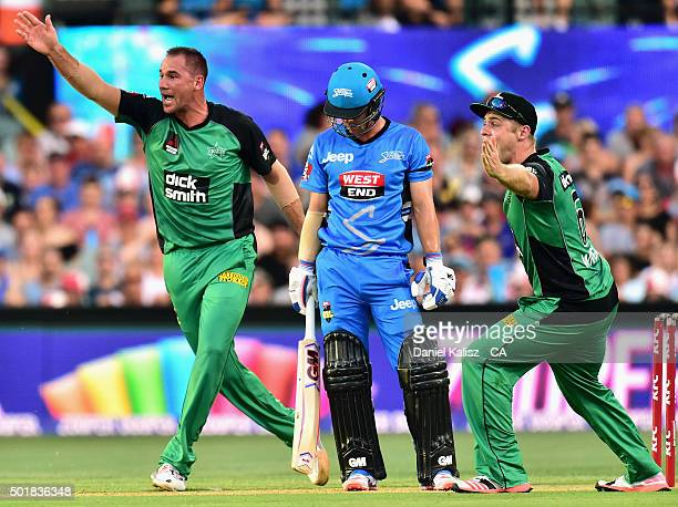 John Hastings of the Melbourne Stars reacts after taking the wicket of Travis Head of the Adelaide Strikers during the Big Bash League match between...