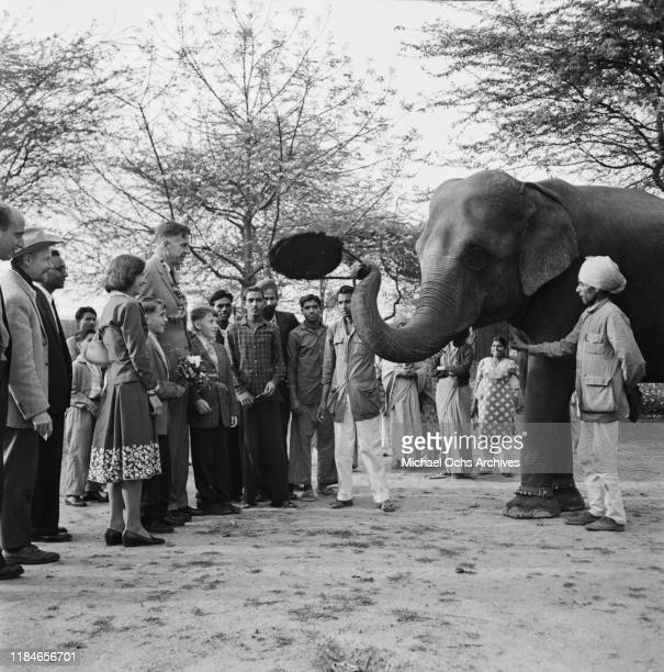 John Kenneth Galbraith , the US Ambassador to India, meets an elephant at the Kamla Nehru Zoological Garden in Ahmedabad, India, whilst accompanied...