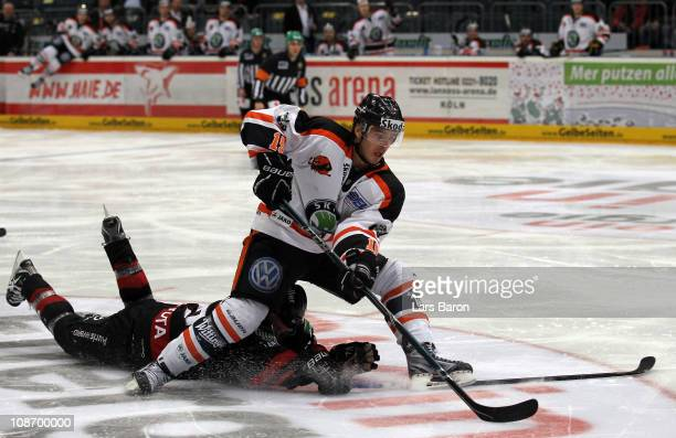 John Laliberte of Wolfsburg is challenged by Philip Gogulla of Koeln during the DEL match between Koelner Haie and Grizzly Adams Wolfsburg at Lanxess...