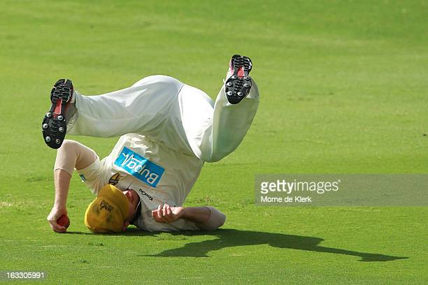 John Rogers of the Warriors takes a catch to dismiss Chadd Sayers of the Redbacks during day two of the Sheffield Shield match between the South...