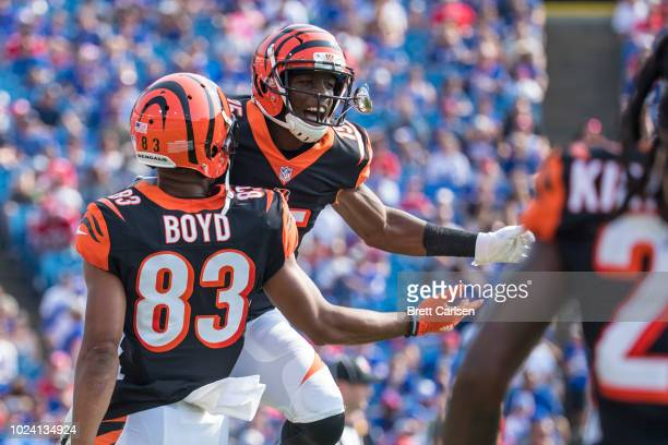 John Ross of the Cincinnati Bengals celebrates a touchdown reception with Tyler Boyd during the first quarter of a preseason game against the Buffalo...