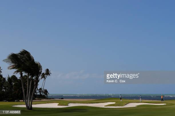 John Senden of Australia and Scott Brown walk the 12th green during the second round of the Puerto Rico Open at Coco Beach Golf and Country Club on...