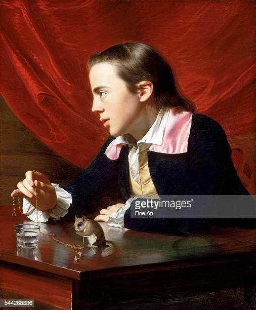 John Singleton Copley A Boy with a Flying Squirrel oil on canvas 771 x 638 cm Museum of Fine Arts Boston