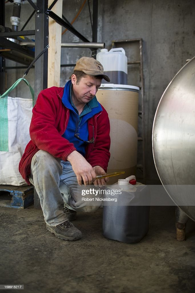 John Williamson inspects a container of freshly crushed flaxseed oil December 14, 2012 on his 200-acre organic farm in North Bennington, Vermont. Williamson's third-generation family farm sold off their dairy cattle and now run the farm as a pilot project for oil seeds to produce biodiesel and seed oils in a sustainable manner. Williamson had over 40-acres of his fields planted with sunflowers to crush for sunflower oil. He also experiments with sorghum, canola, mustard and saffron. Williamson's project has received grants from the University of Vermont for machinery for distilling biodiesel that he sells to farmers that have contributed seeds to his oil seed crusher and distillery. The by-product of the oil seed process has value as animal feed stock. Williamson's farm is prioritizing not only total yield of the oil seed crops but the inputs necessary to economically grow, harvest and process the crops.