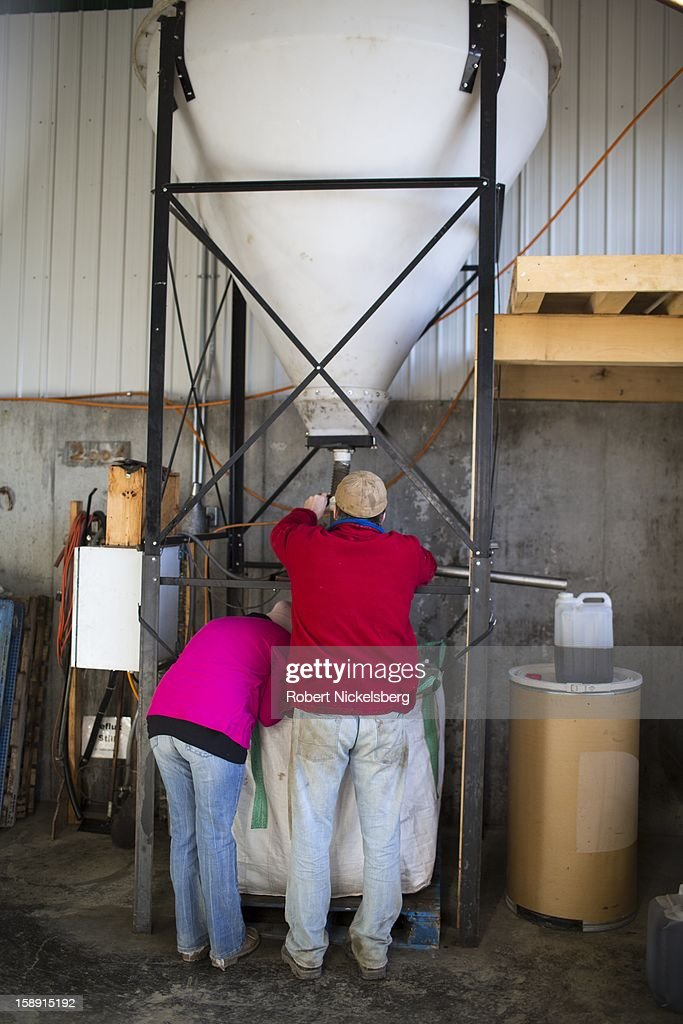John Williamson, right, and his fiance, Melissa Tirrell, right, adjusts a seed crushing machine making flaxseed oil December 14, 2012 on his 200-acre organic farm in North Bennington, Vermont. Williamson's third-generation family farm sold off their dairy cattle and now run the farm as a pilot project for oil seeds to produce biodiesel and seed oils in a sustainable manner. Williamson had over 40-acres of his fields planted with sunflowers to crush for sunflower oil. He also experiments with sorghum, canola, mustard and saffron. Williamson's project has received grants from the University of Vermont for machinery for distilling biodiesel that he sells to local farmers that have contributed seeds to his oil seed crusher and distillery. The by-product of the oil seed process has value as animal feed stock. Williamson's farm is prioritizing not only total yield of the oil seed crops but the inputs necessary to economically grow, harvest and process the crops.