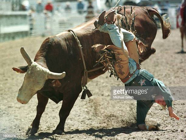 John Wilson gets bucked off a bull during the fourth round of the Bull Riding competition at the Cheyenne Frontier Days Rodeo July 27 2001 in...