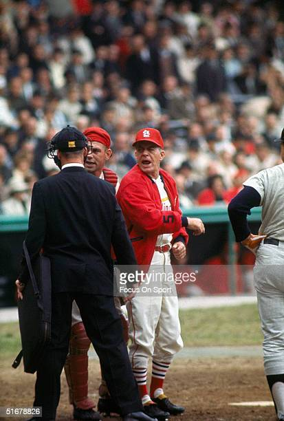 Johnny Keane the Cardinals' manager argues with a referee during the1964 world series against the New York Yankees at Sportsman's Park in St Louis...