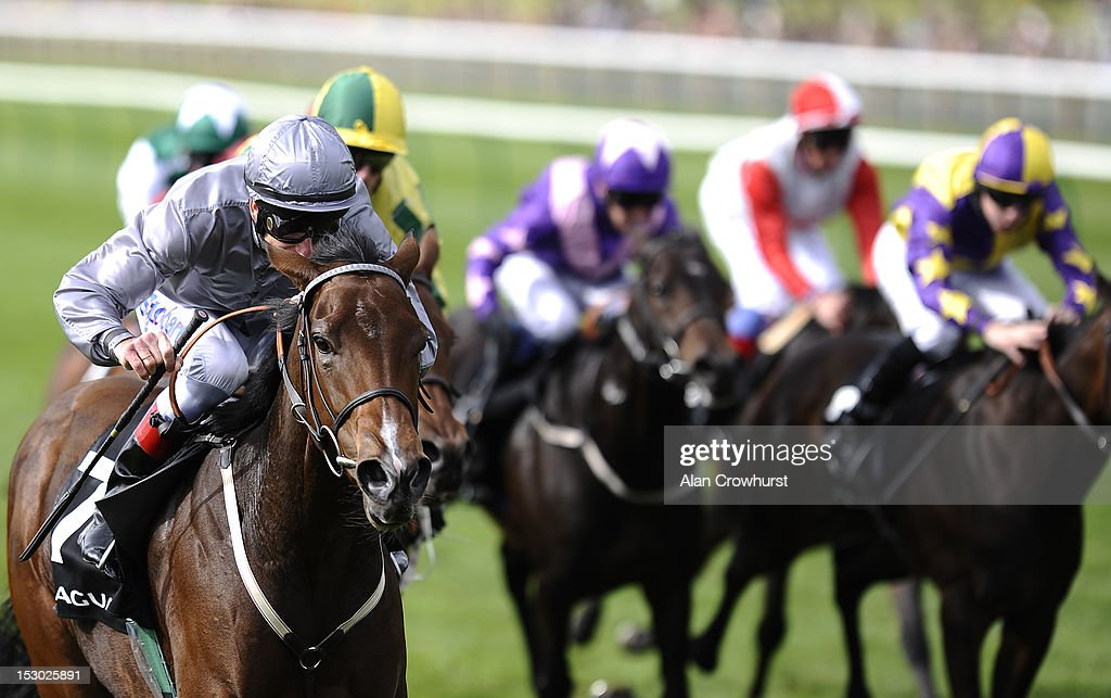 Newmarket Races : News Photo