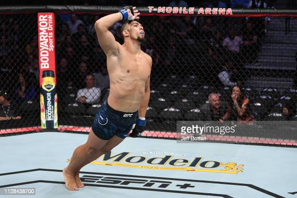 Johnny Walker of Brazil celebrates his victory over Misha Cirkunov of Latvia in their light heavyweight bout during the UFC 235 event at TMobile...