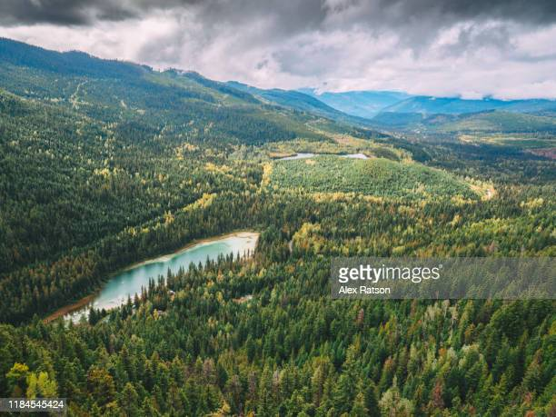 johnsons lake, british columbia, canada - kamloops stock pictures, royalty-free photos & images
