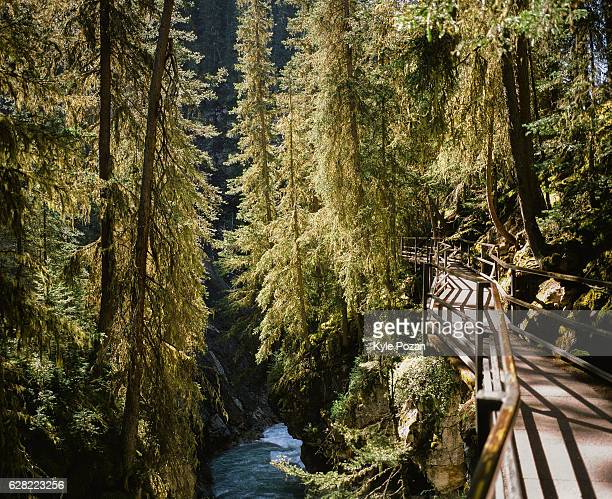 johnston canyon, alberta, canada - bow river stock pictures, royalty-free photos & images