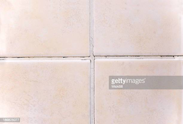 Joint Grout Damaged