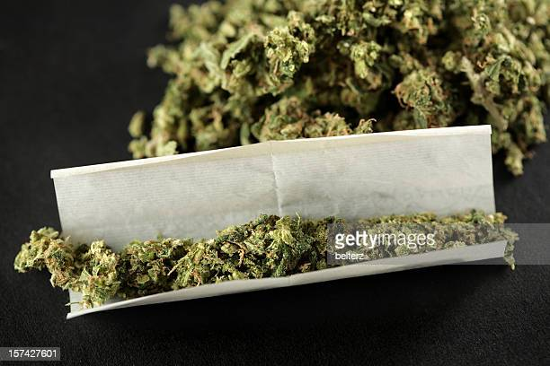 joint - marijuana joint stock pictures, royalty-free photos & images