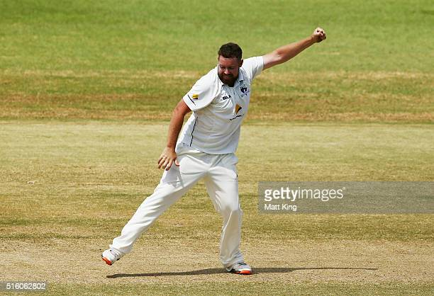 Jon Holland of the Bushrangers celebrates taking the wicket of Nic Maddinson of the Blues during day three of the Sheffield Shield match between...