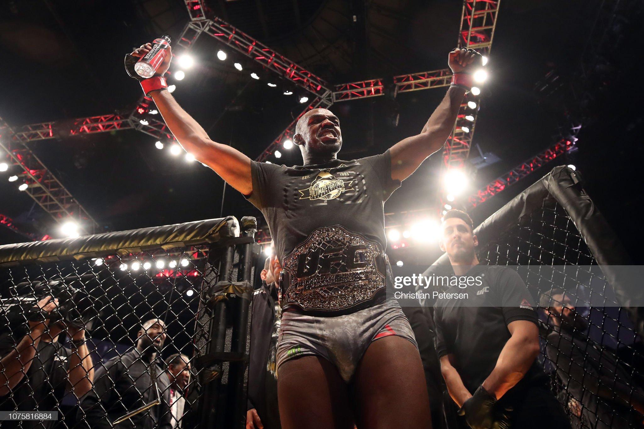 UFC 232: Jones v Gustafsson 2 : News Photo