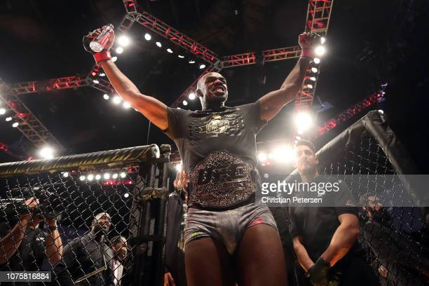 Jon Jones celebrates after defeating Alexander Gustafsson of Sweden in their light heavyweight bout during the UFC 232 event inside The Forum on...