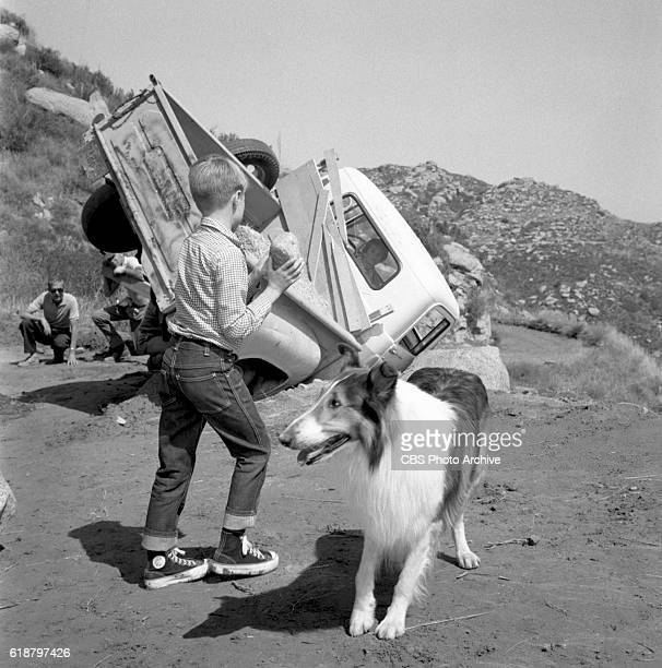 Jon Provost with Lassie in the CBS television show Lassie episode Lassie to the Rescue June Lockhart is in the truck Image dated June 25 1963 Burbank...