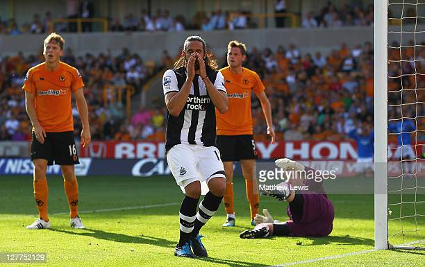Jonas Gutierrez of Newcastle looks on aafter missing a chance on goal during the Barclays Premier League match between Wolverhampton Wanderers and...