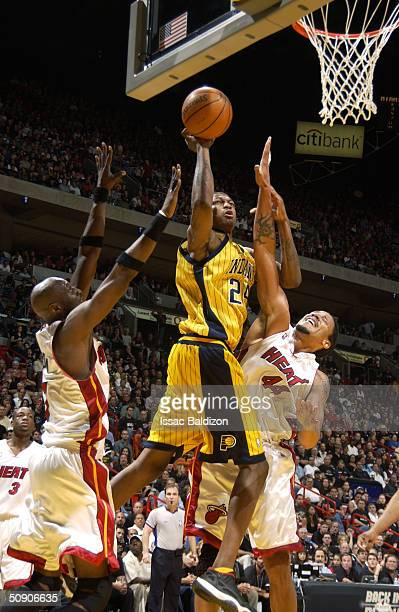 Jonathan Bender of the Indiana Pacers goes up for a shot over Brian Grant and Lamar Odom of the Miami Heat in Game six of the Eastern Conference...
