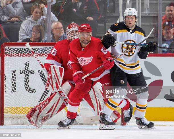 Jonathan Bernier of the Detroit Red Wings follows the play as teammate Trevor Daley defends against Anders Bjork of the Boston Bruins during an NHL...