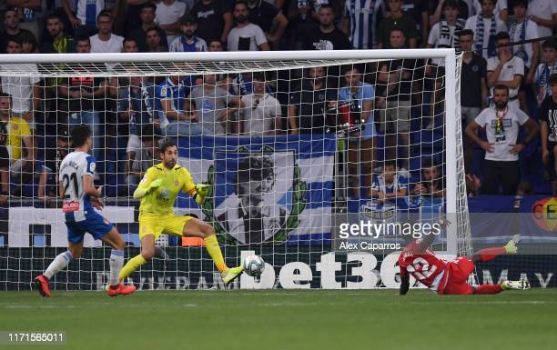 Jonathan Calleri of Espanyol scores his team's third goal during the La Liga match between RCD Espanyol and Granada CF at RCDE Stadium on September...