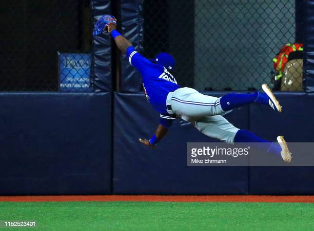 Jonathan Davis of the Toronto Blue Jays makes a diving catch in the first inning during a game against the Tampa Bay Rays at Tropicana Field on May...