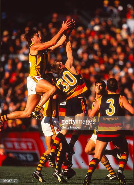 Jonathan Hay of the Hawks takes a mark during the round 17 AFL match between Adelaide and Hawthorn at Football Park on July 25 1999 in Adelaide...