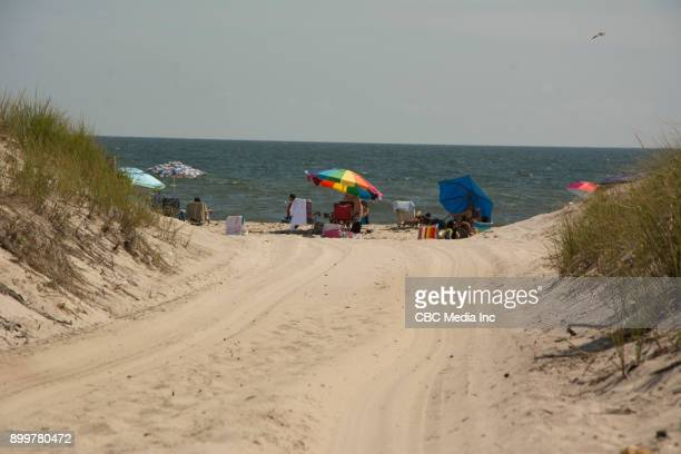 jones beach - long island - wantagh stock pictures, royalty-free photos & images