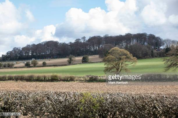 Jones Hill Wood, ancient woodland in the Chilterns AONB which is said to have inspired Roald Dahl, is viewed from the A413 during tree felling...