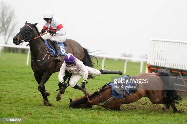 Jonjo O'Neill Jr falls from Russian Exile at the last during The Be Wiser Novices' Hurdle at Wincanton Racecourse on January 30 2020 in Wincanton...