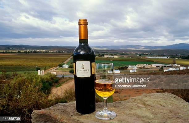 Jonkheer wine Robertson Valley near Bonnievale Western Cape