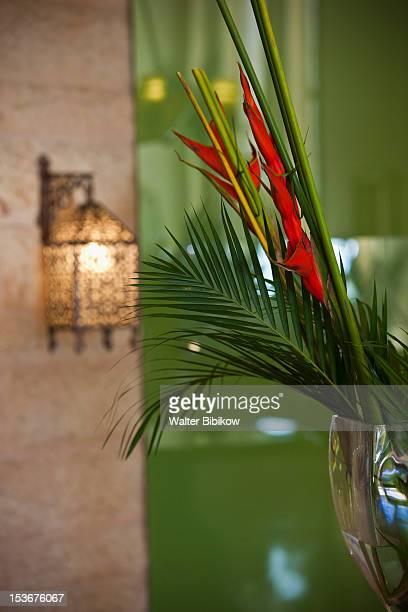 Jordan, Aqaba, lamp & heliconia flower
