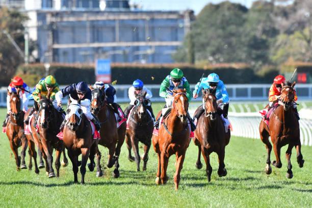 Wangaratta Race Course