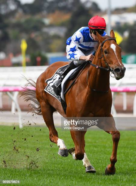 Jordan Childs riding Redkirk Warrior during a track gallop during Melbourne Racing at Flemington Racecourse on May 19 2018 in Melbourne Australia...