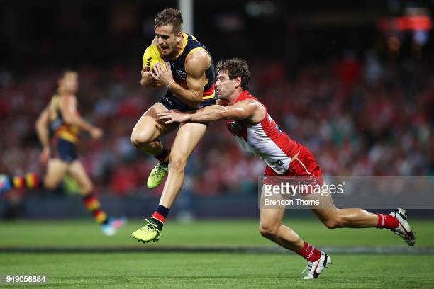 Jordan Galluci of the Crows grabs a mark during the round five AFL match between the Sydney Swans and the Adelaide Crows at Sydney Cricket Ground on...
