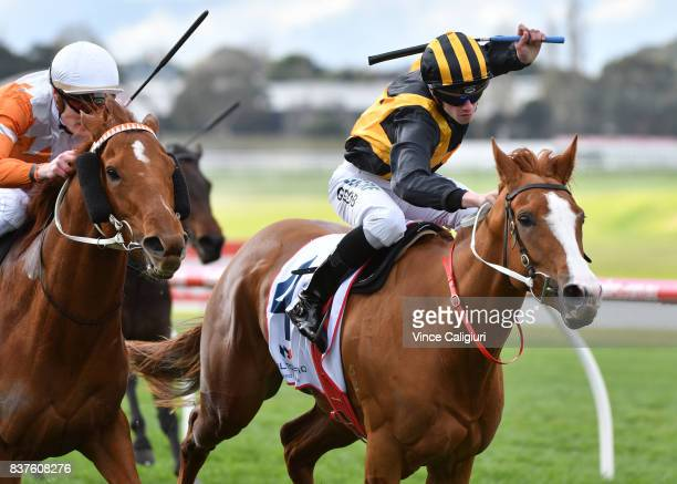 Jordan Grob riding Special Diva defeats Mark Zahra riding Gold Fontein in Race 4 during Melbourne Racing at Sandown Hillside on August 23 2017 in...