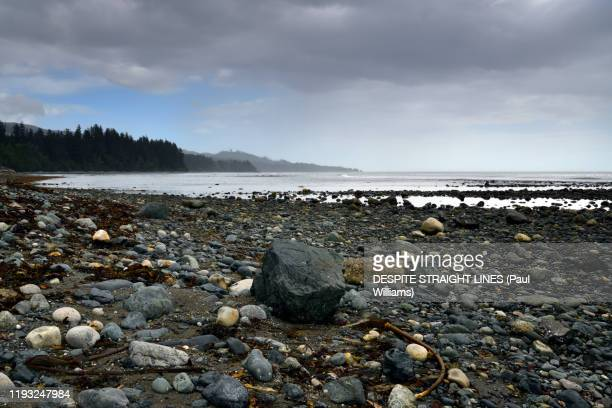 jordan river shoreline on the salish sea in british columbia - vancouver island stock pictures, royalty-free photos & images