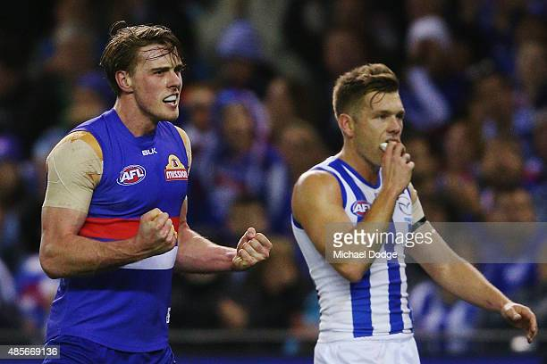Jordan Roughead of the Bulldogs celebrates a goal next to Shaun Higgins of the Kangaroos during the round 22 AFL match between the North Melbourne...