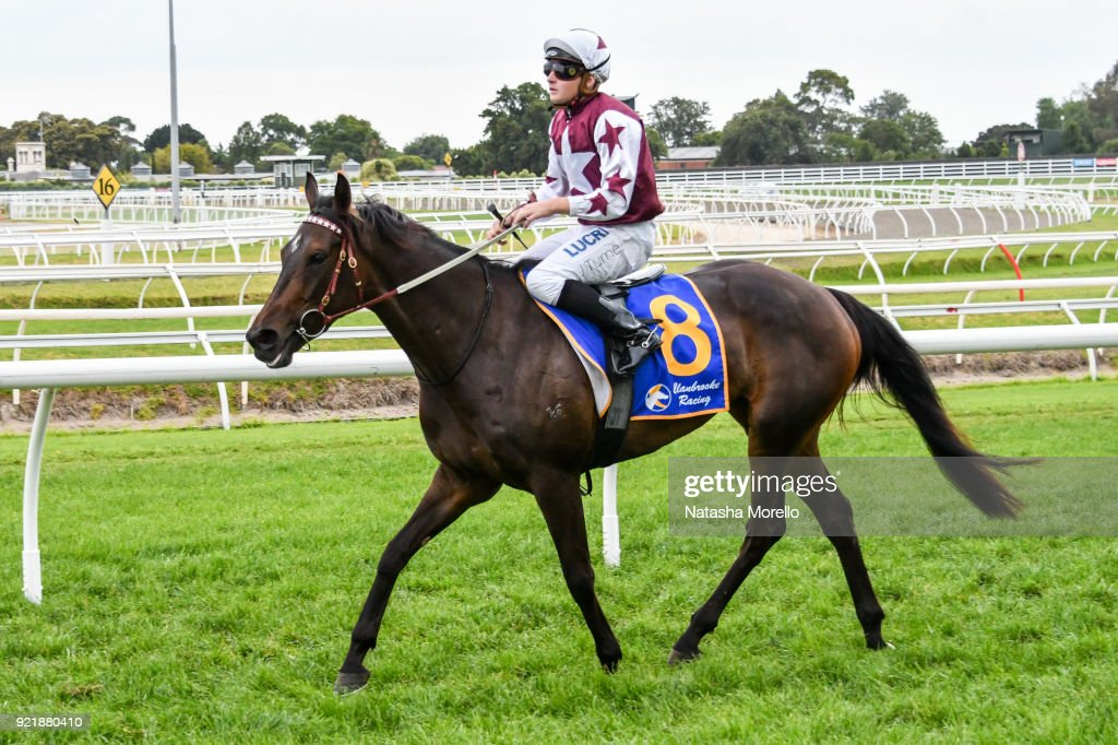 Clanbrooke Racing Handicap : News Photo