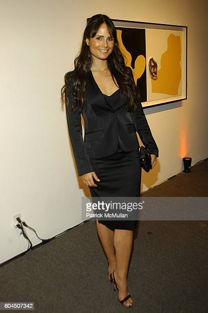 Jordana Brewster attends pARTy 2006 Presented by The New Yorker at Gemini GEL on November 14 2006 in Los Angeles CA