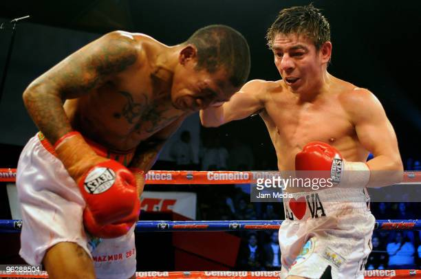 Jorge Arce of Mexico fights Angky Angkota of Indonesia in a WBO super flyweight title eliminator at The Antonio Velazquez Bullring on January 29 2010...