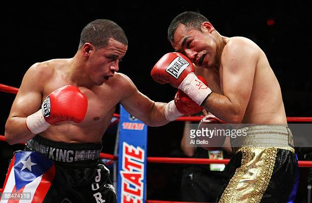 Jorge Diaz punches Guadalupe DeLeon during their Super Bantamweight fight at Madison Square Garden on June 13 2009 in New York City