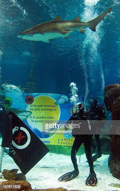 Jorge Lorenzo Spanish MotoGP champion dives with sharks at the Barcelona Aquarium on December 30 2010 in Barcelona Spain