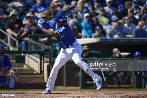 Jorge Soler of the Kansas City Royals stands at bat in the spring training game against the Los Angeles Dodgers at Surprise Stadium on February 24...